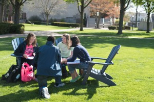 students spend time together studying on the quad