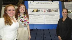 LVC History students present their research at the Inquiry poster session