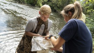 LVC Environmental Science students gather materials from Quittie Creek to test water quality