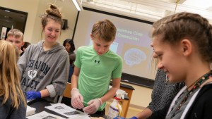 LVC students conduct laboratory experiences for research