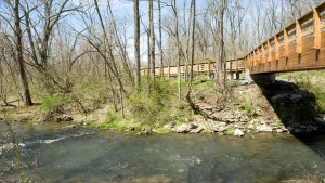 The Quittie Creek Nature Park is a short walk from LVC's campus
