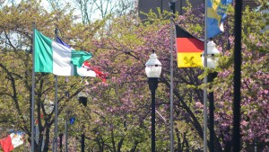 Flags from international countries line Sheridan Avenue