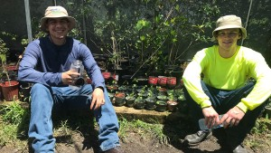 LVC Students participated in a week of environmental restoration in Puerto Rico after Hurricane Maria.