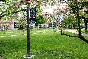Beauty shot of LVC's campus